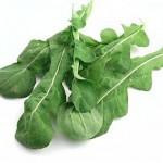 Листья рукколы для увеличения количества сперматозоидов